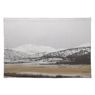 snow scene cloth placemat
