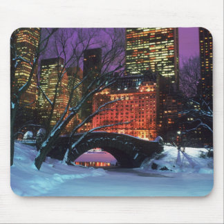 Snow Scene In Central Park Mouse Pad