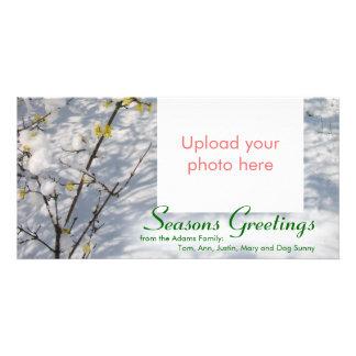 Snow Seasons Greetings Bilderkarten