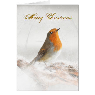 Snow Shower Robin Redbreast Greeting Card