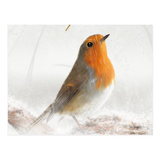 Snow Shower Robin Redbreast Post Cards