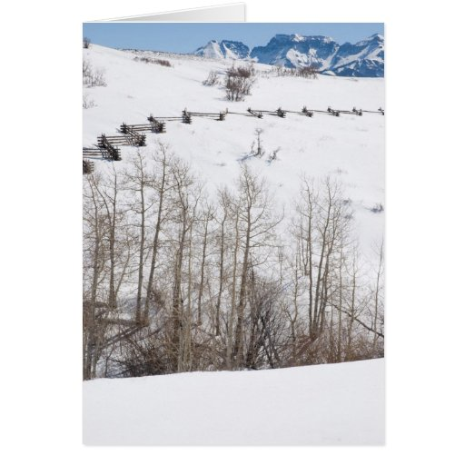 snow slope holiday greeting card
