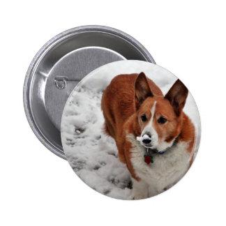 Snow Snout Pin