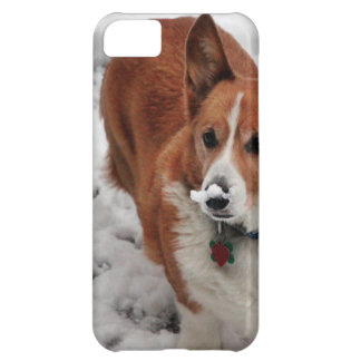 Snow Snout iPhone 5C Covers