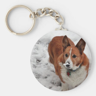 Snow Snout Key Chains
