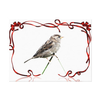 Snow Sparrow Stretched Canvas Prints
