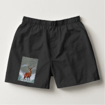 SNOW STAG BOXERS