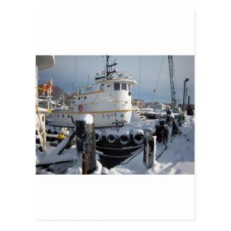 Snow storm 2010 133 postcard