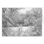 Snow Storm Greeting Card