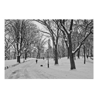 Snow Stroll in Central Park Poster