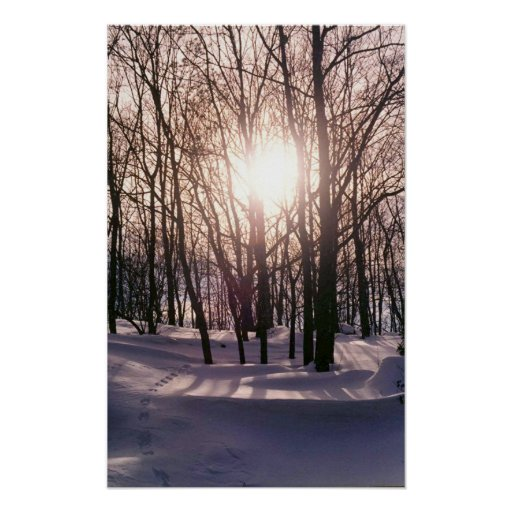 Snow Sun Print