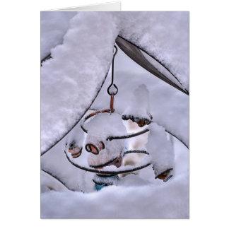 Snow Swirl Card