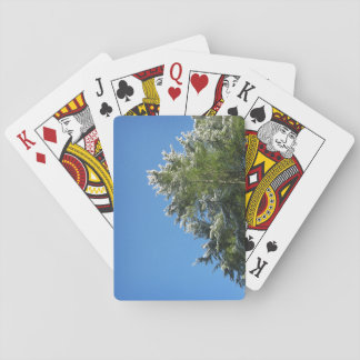 Snow-tipped Pine Tree on Blue Sky Card Decks