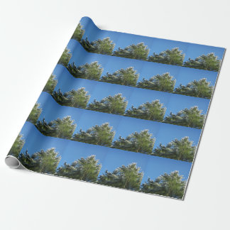 Snow-tipped Pine Tree on Blue Sky Wrapping Paper