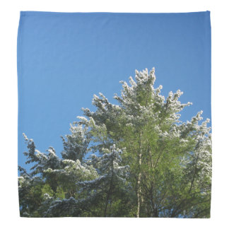 Snow-tipped Pine Tree on Blue Sky Bandana