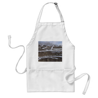 snow topped aztec ruins in new mexico adult apron