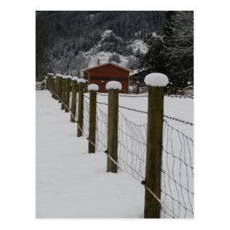 Snow Topped Rural Farm Fenceposts Postcard