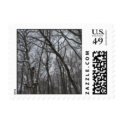 Snow Topped Winter Trees - Tall Icy Frozen Trees Postage