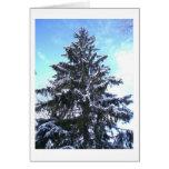 Snow Tree Greeting Cards