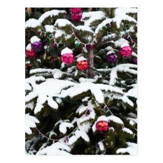 snow tree.jpg postcards