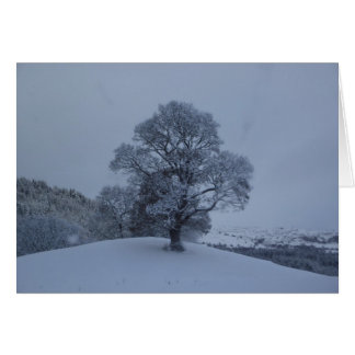 Snow Tree Stationery Note Card