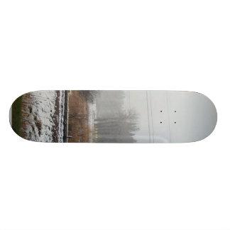 Snow Trees Fields Skate Board