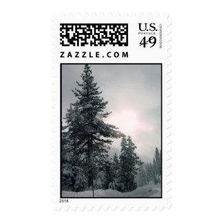 Snow Trees Postage
