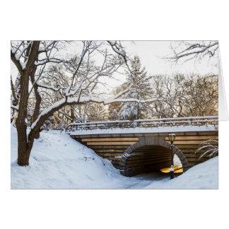 Snow Tunnel Central Park Card