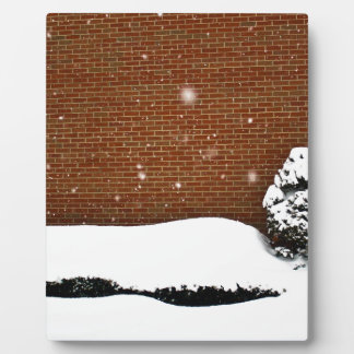 Snow Wall Plaque