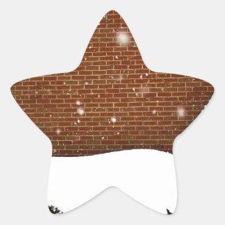 Snow Wall Star Sticker