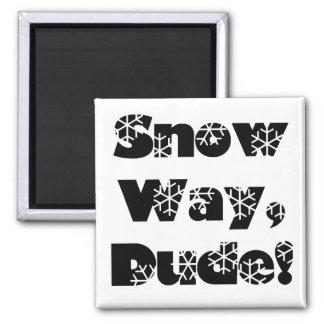 Snow Way, Dude...1 Refrigerator Magnets