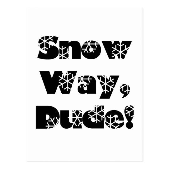 Snow Way, Dude...1 Postcard