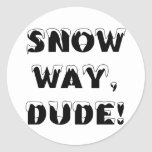 Snow Way, Dude...3 Classic Round Sticker