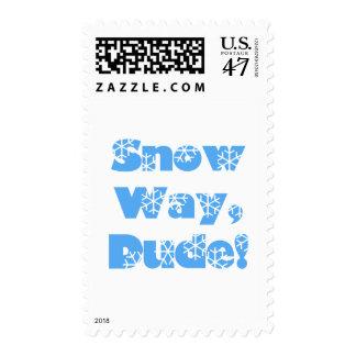 Snow Way, Dude...blue Postage