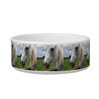 Snow White Bowl