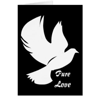 Snow White Dove - Greeting Card