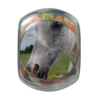Snow White Glass Jars