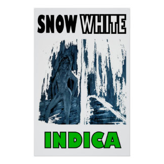 SNOW WHITE INDICA POSTERS
