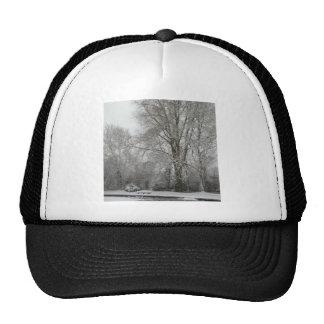 Snow Willow Mesh Hat