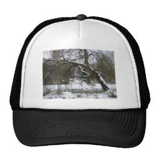 Snow Willow Hat