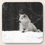 Snow Wolf Drink Coasters