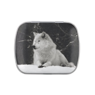 Snow Wolf Jelly Belly Tins
