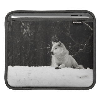 Snow Wolf Sleeve For iPads