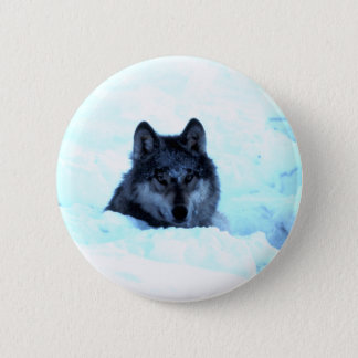 Snow Wolf  Wolves Button