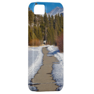 Snow Woodlands Path Nature iPhone 5 Case-Mate Ca iPhone SE/5/5s Case