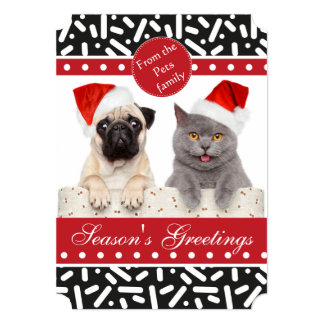 Snow Xmas Stationary and Gifts Card