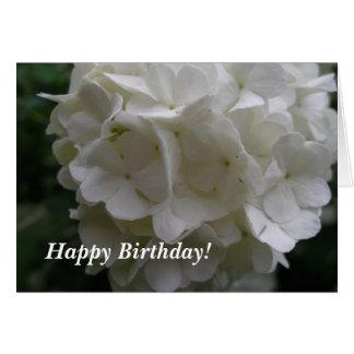 Snowball Bush Birthday Card
