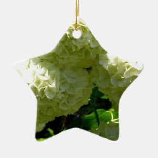 Snowball Bush Blooms Ceramic Ornament