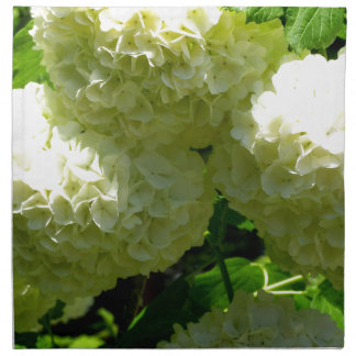 Snowball Bush Blooms Napkin