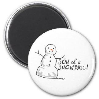 Snowball Fridge Magnet